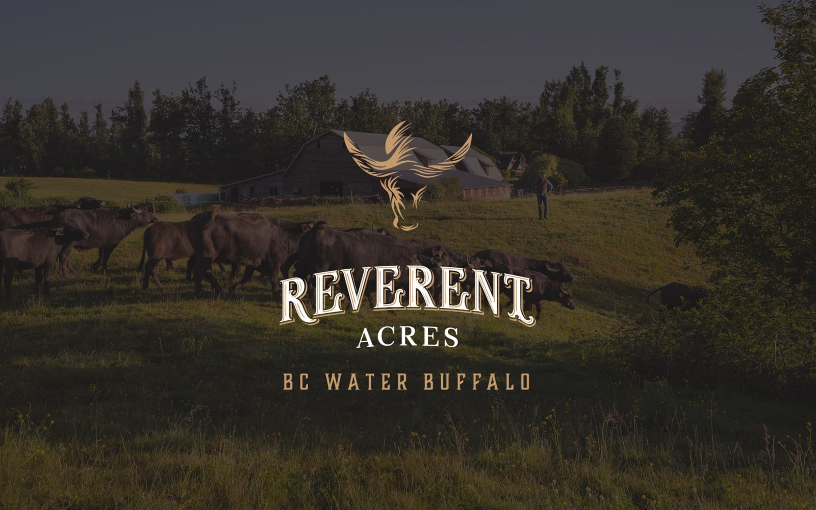 Reverent Acres logo and farm image